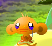 Hra - Monkey go happy