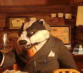 Hra - Fantastic Mr Fox Hidden Objects