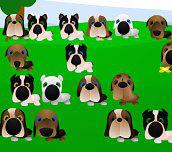Hra - Stratené šteniatko