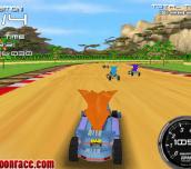 Hra - Crash Bandicoot 3D