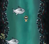 Hra - Divey Jones Bitey Shark