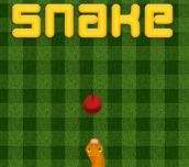 Hra - Snake HTML5