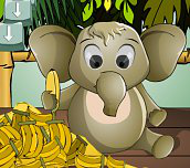 Hra - Hladné sloníča