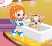 Hra - Animal Caring Game