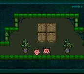 Hra - Pig Dream