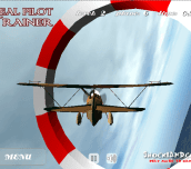 Hra - Real Pilot Trainer