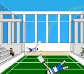 Hra - Ragdoll Tennis