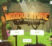Hra - Woodventure