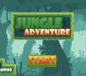 Hra - Jungle Adventure